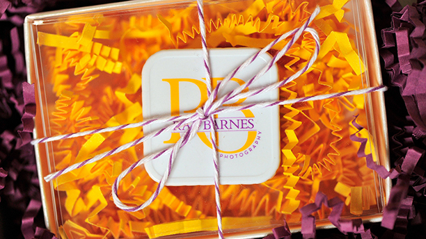 rae barnes photography, branding, brand board, logo design, purple, gold, packaging design, baker's twine, boxes, crinkle paper, flash drive
